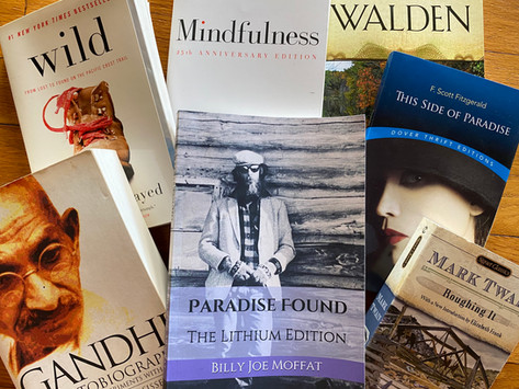 Excerpts from PARADISE FOUND: The Lithium Edition
