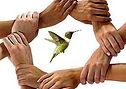 mains-colibris.jpg