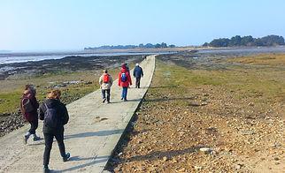 Association PLURIEL, balades et randonnées