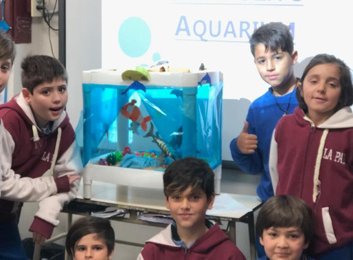 6th - Aquariums all over the world