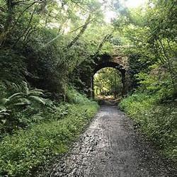 The Railway Trail