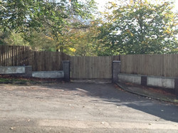 Feather Edge Fencing/Double Gates