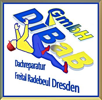 Dacharbeit ohne Gerüst Dresden, Dachrepa