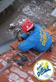 Dacharbeit im Winter 022.png