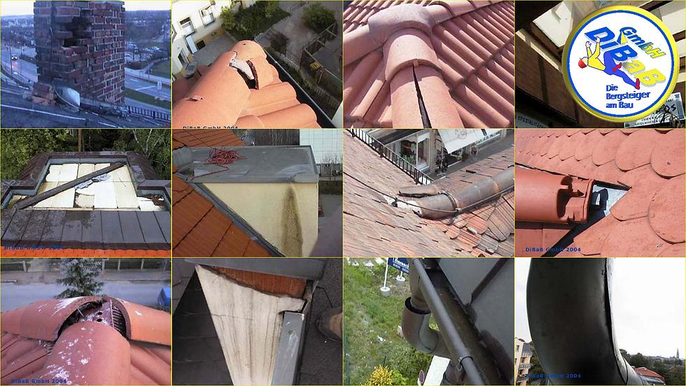 Dacharbeit ohne Gerüst Dresden, Dachstei