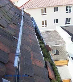 Dachrinnenreinigung Dresden I DiBaB