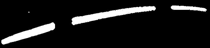 DiBaB-Bild-Horizontlinie-2.png