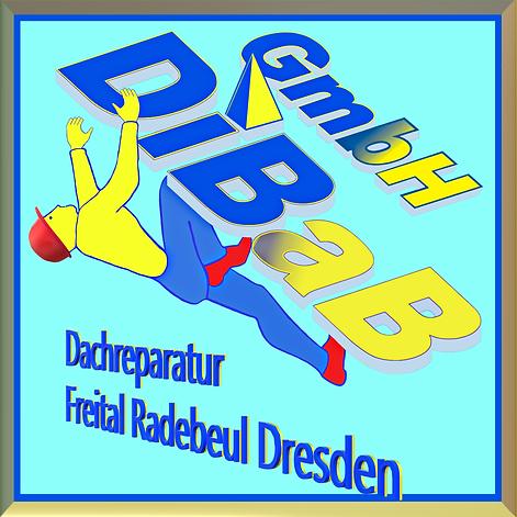 Dachrinnenreinigung Dresden, Dacharbeit