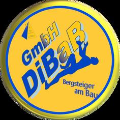 Dachdecker, Dachsteiger, Dresden, Dachre