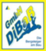 Dacharbeiten ohne Gerüst | DiBaB GmbH Die Bergsteiger am Bau | Dresden
