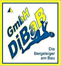 Dachdecker, Dacharbeiten ohne Gerüst, Dachsteiger, Dachrinnenreinigung, Industriekletterer, Dresden