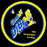 Dachreparatur Dresden, Dachsteiger Dresd