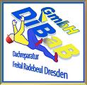Dachkletterer Dresden.png