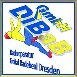 Dachreparatur Dresden, Dach reparieren D