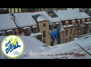 Dachschaden   Dresden   DiBaB GmbH Die Bergsteiger am Bau