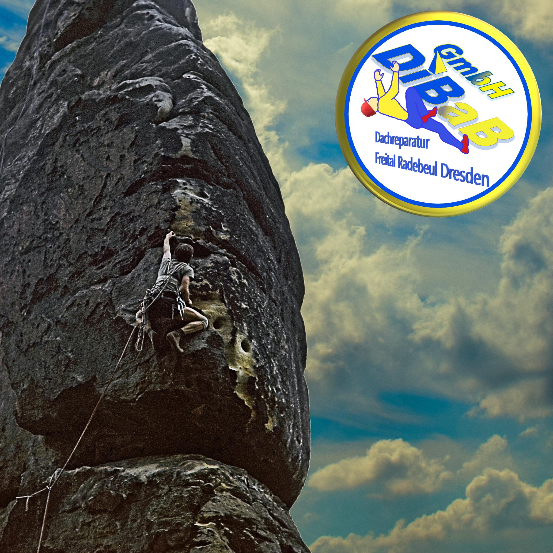 Bergsteiger Dresden, Industriekletterer Dresden, Freital, Radebeul, Dachrinnenreinigung Dresden