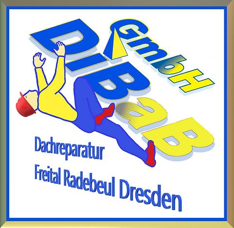 Dachsteiger Dresden, Industriekletterer
