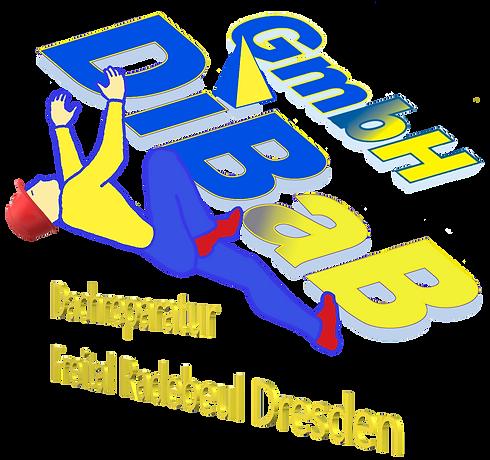 Dachsteiger Dresden, Dachreparatur Dresd