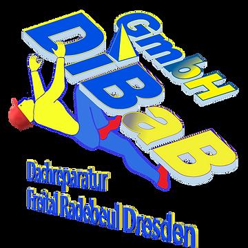 Dachsteiger | Dresden | DiBaB GmbH Die Bergsteiger am Bau