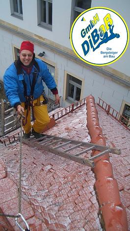 Dacharbeit im Winter 025.png
