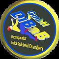 Dachdecker Dresden (2).png