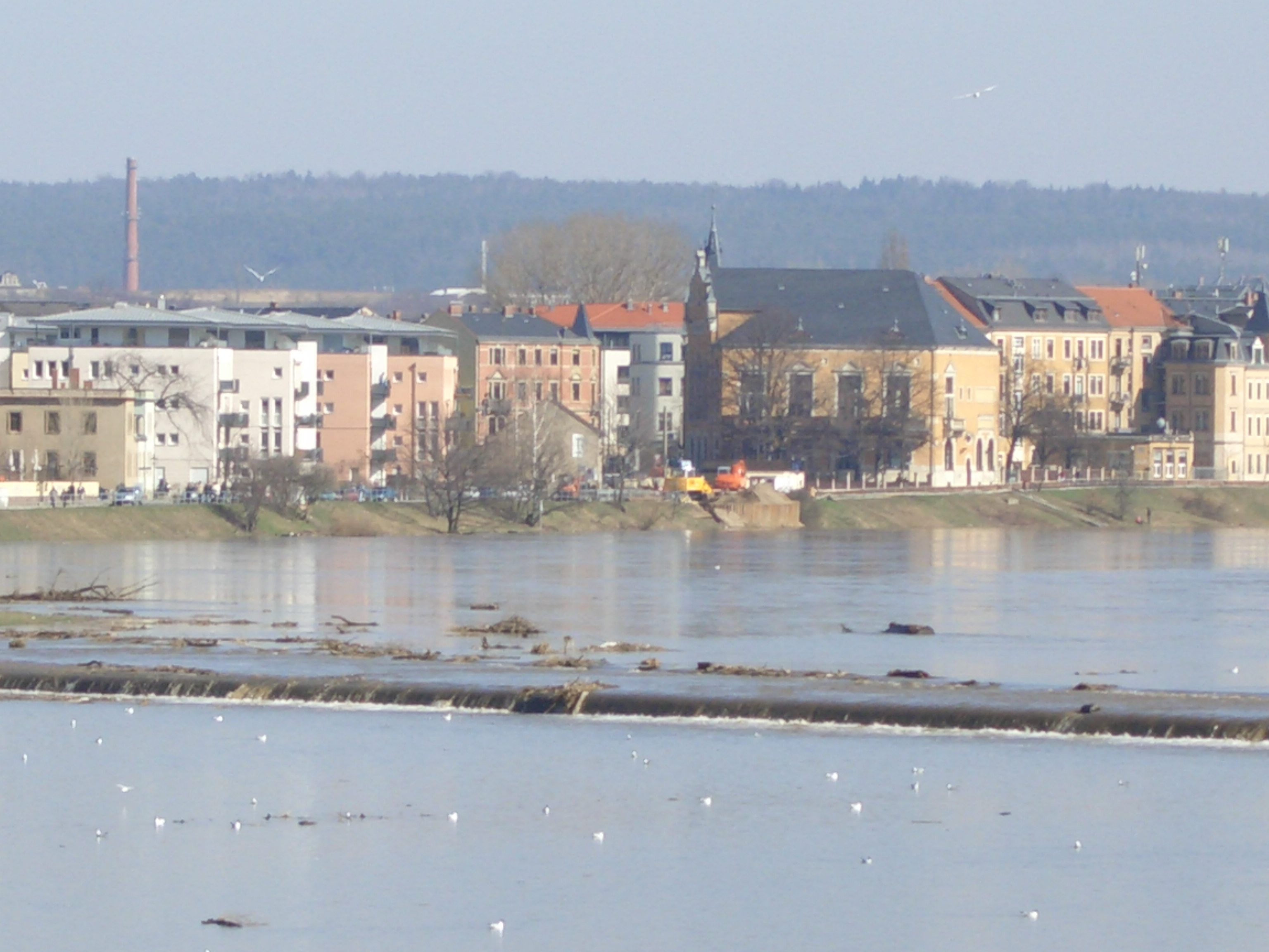 Elbe-Hochwasser 03-2005