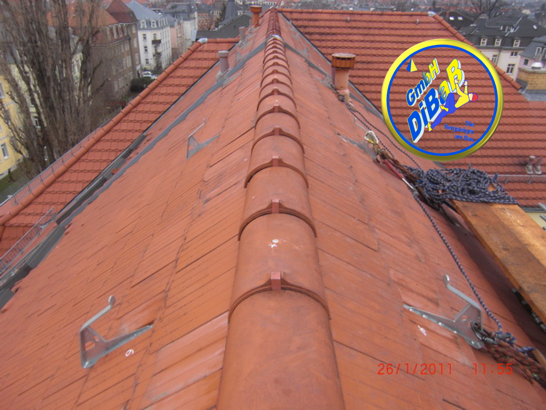 Leiterhaken, DiBaB GmbH, Dachsteiger Dresden, Dachreparatur