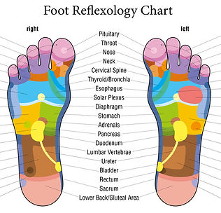 foot map Fotolia_65282262_S (2).jpg