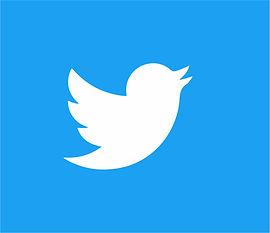 twitter icon-08.jpg