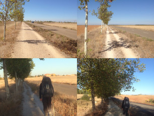 Day 45 on the Camino