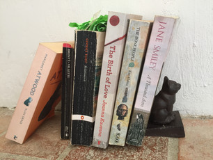My Top Ten Novels & Pictures of Other Novels