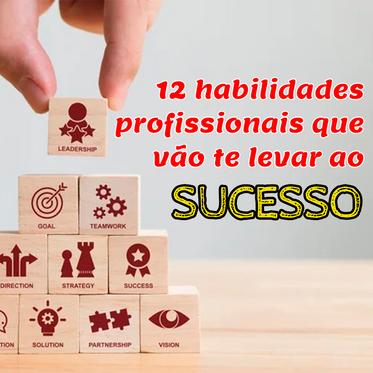 12 habilidades que todo profissional precisa ter se quiser ser bem sucedido