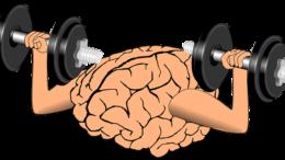 Cérebro fazendo musculação para a entrevista de emprego