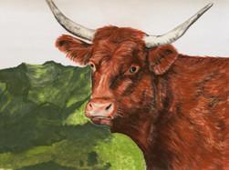 pastel vache