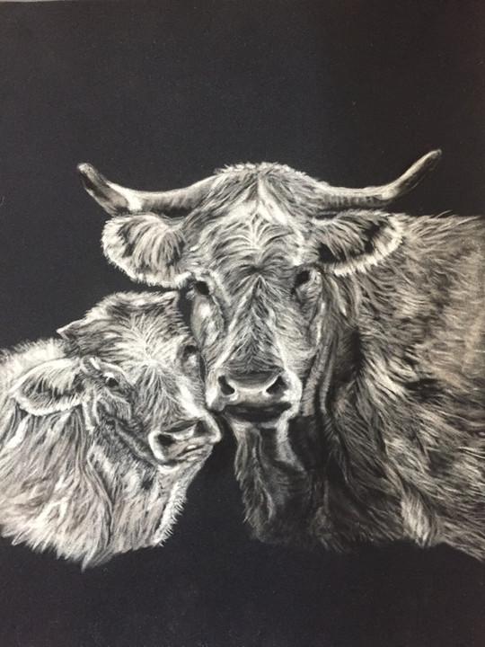 pastel vaches