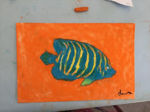 pastel poisson