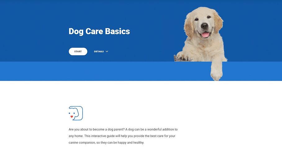 Articulate Rise Dog Care Basics