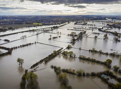 flood land_edited.jpg