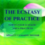 The Ecstasy of Practice ACX cover new.pn