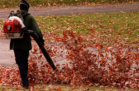 Local Regulation of Leaf Blower Use Is a Proper Use of Police Power