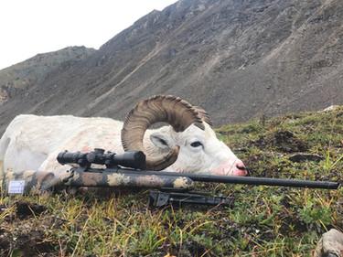 Exodus Rifles - Hunting