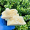 Thumbnail: Lemongrass Soap