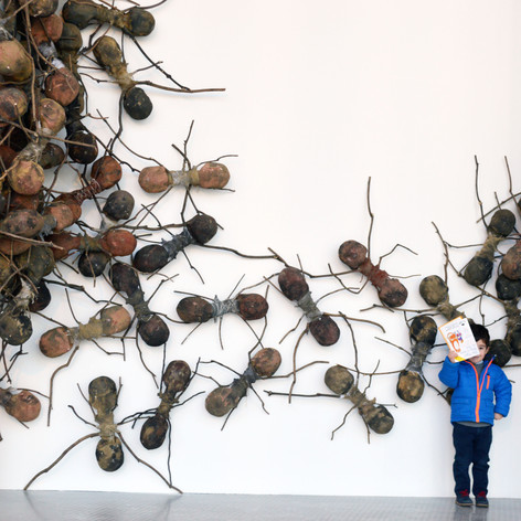 Giant ants invade the Lowry theatre for latest exhibition
