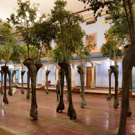 La exposición 'Regresando a la semilla' se toma el Teatro Faenza hasta noviembre