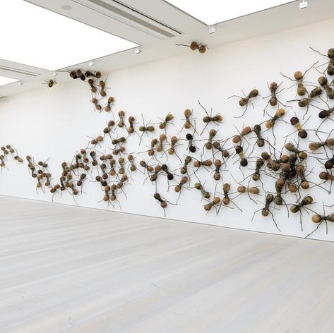 Rafael Gómezbarros Exhibited at The Saatchi Gallery