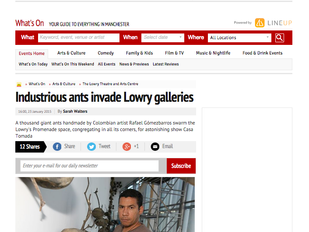"Industrious ants invade Lowry galleries - Post ""Manchester Evening News"""