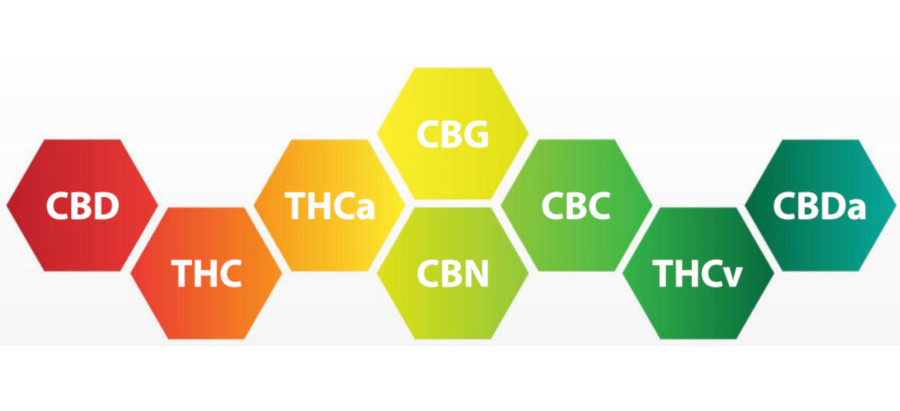 What Are Other Cannabinoids beyond CBD and THC?