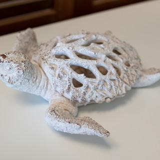Coral Turtle Decor