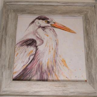 Florida Bird Print