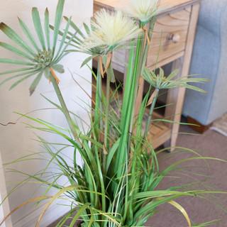 Artificial Grass in Basket